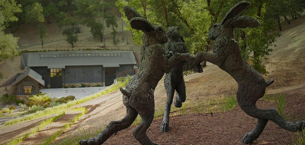 Dancing Hares Vineyard