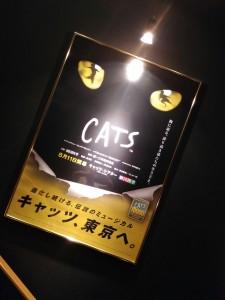 キャッツ1
